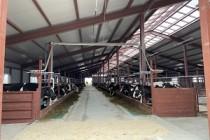 В Кировской области запустили новую ферму