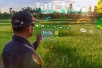 Цифровые решения в агропромышленной сфере представят на форуме Kazan Digital Week-2020