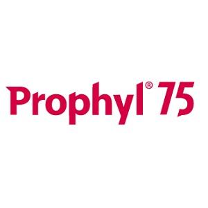 profyl 75-foto